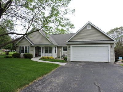 Fort Atkinson WI Single Family Home Active Contingent With Offer: $259,900