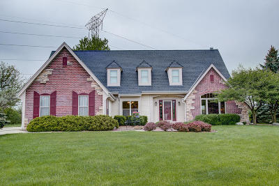 Brookfield Single Family Home Active Contingent With Offer: 1555 Brian Ct