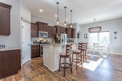 Racine County Single Family Home For Sale: 2456 S Teut Rd