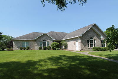 Racine County Single Family Home For Sale: 920 S Teut Rd