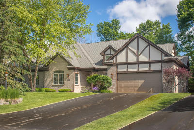 Brookfield Condo/Townhouse Active Contingent With Offer: 21010 Black Walnut Ln #B
