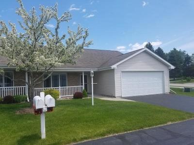 Sheboygan Condo/Townhouse Active Contingent With Offer: 1511 Nutmeg Ct
