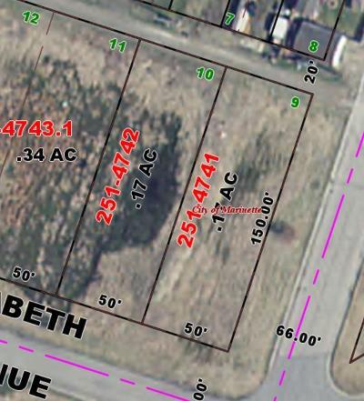 Menominee County, Marinette County Residential Lots & Land For Sale: .17 Acres Elizabeth St