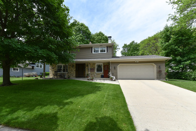 West Bend Single Family Home Active Contingent With Offer: 904 Mulberry E Dr