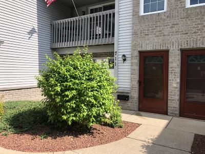 Condo/Townhouse Active Contingent With Offer: 711 Quinlan Dr #D