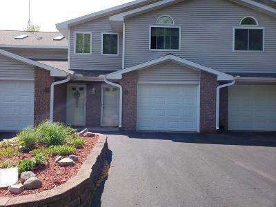Menominee County, Marinette County Condo/Townhouse For Sale: 491 N Splake Crt