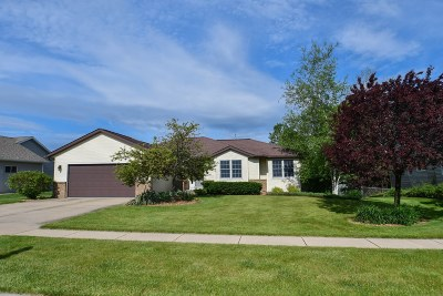 Watertown Single Family Home For Sale: 1208 Meadowbrook Dr