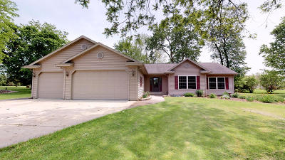 Fort Atkinson Single Family Home For Sale: W7273 River Trail Pass