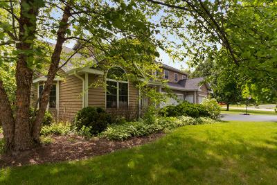 Williams Bay Single Family Home For Sale: 385 Smythe Dr