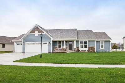 East Troy Single Family Home For Sale: 2809 Lakeview Dr