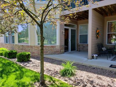Menomonee Falls Condo/Townhouse Active Contingent With Offer: N74w13737 Appleton Ave #101