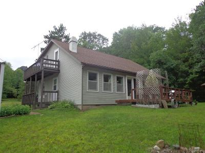 Single Family Home For Sale: N11975 Dumman Rd