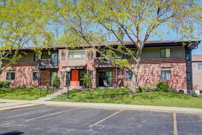 Pewaukee Condo/Townhouse Active Contingent With Offer: 354 Park Hill Dr #A
