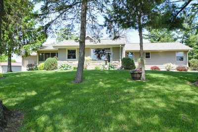 Racine County Single Family Home For Sale: 22020 7 Mile W Rd