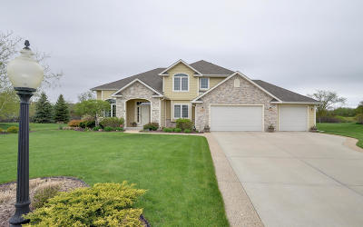 Racine County Single Family Home Active Contingent With Offer: 8718 Blue Spruce Ct