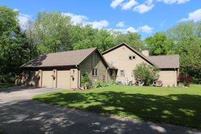 Racine County Single Family Home For Sale: 23700 Washington Ave