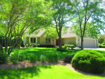 New Berlin Single Family Home Active Contingent With Offer: 12595 W North Ln