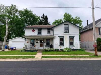 Watertown Single Family Home For Sale: 213 E Green St