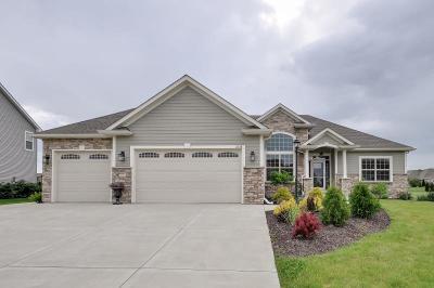 Racine County Single Family Home For Sale: 2338 Carlas Way