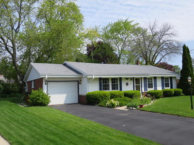 South Milwaukee Single Family Home Active Contingent With Offer: 304 Parkway Dr