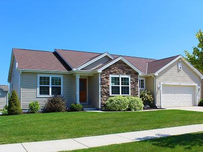 Racine County Single Family Home For Sale: 3729 95th Pl