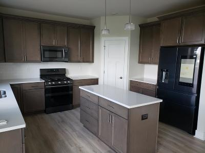 Kenosha Single Family Home For Sale: 790 21st Ave