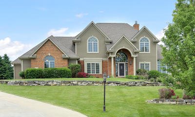 Wales Single Family Home For Sale: 133 Legend Way