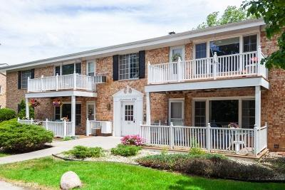 Ozaukee County Condo/Townhouse Active Contingent With Offer: 524 Laurel Lake Rd #6
