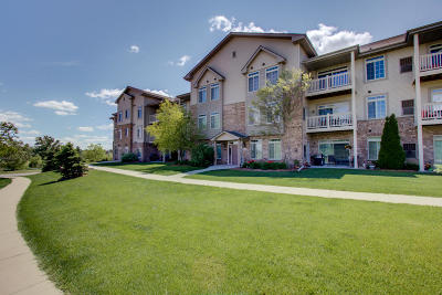 Jackson WI Condo/Townhouse Active Contingent With Offer: $110,000