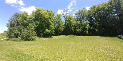 Lake Mills Residential Lots & Land For Sale: Lt1 Brewster Dr