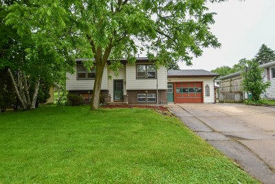 Watertown Single Family Home For Sale: 1507 Davis St