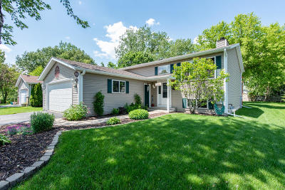Pleasant Prairie WI Single Family Home For Sale: $268,875