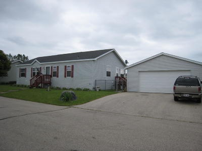 Elkhorn WI Condo/Townhouse For Sale: $135,000