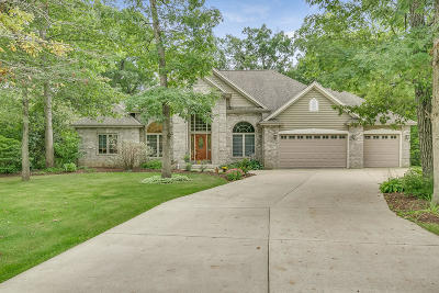 Racine County Single Family Home For Sale: 6557 Hillwood Ct