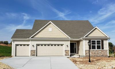 Ozaukee County Single Family Home For Sale: 1682 Willow Dr