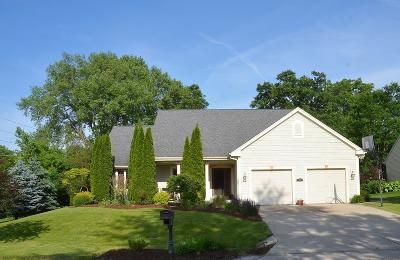 Delafield Single Family Home For Sale: 100 Woodberry Dr