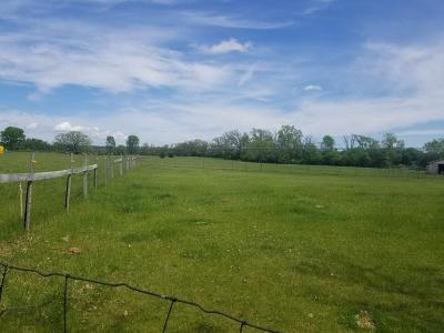 Eagle Residential Lots & Land For Sale: Lot 2 County Road Zz
