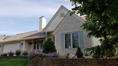 Waukesha Single Family Home For Sale: 1209 River Place Blvd