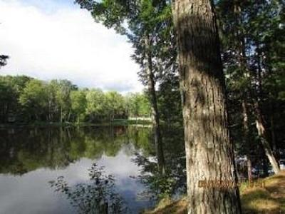 Wausaukee Residential Lots & Land For Sale: Lot 27 Menominee Shores Dr