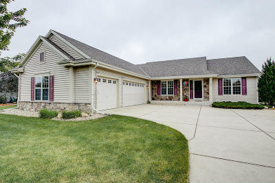 Waterford Single Family Home For Sale: 731 Bass Dr