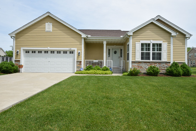 Waukesha County Single Family Home For Sale: 1160 Chester St