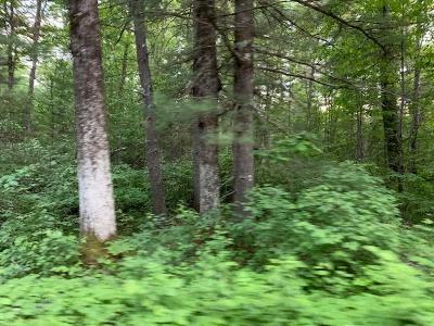 Pembine Residential Lots & Land For Sale: Tbd Woodpecker Rd
