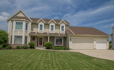 Milwaukee County Single Family Home For Sale: 3788 W Jerelin Dr