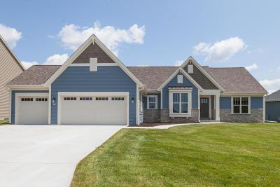 Racine County Single Family Home For Sale: 403 Fairview Cir