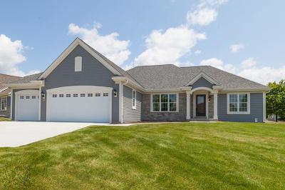 Racine County Single Family Home For Sale: 401 Fairview Cir