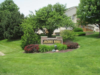 Waukesha County Condo/Townhouse Active Contingent With Offer: 17949 W Jacobs Ridge #Ct