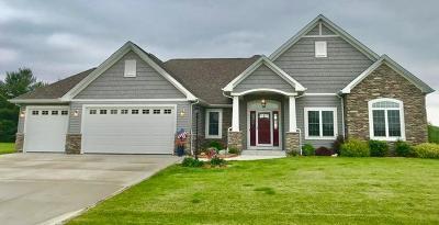 Racine County Single Family Home For Sale: 8116 Daub Ct