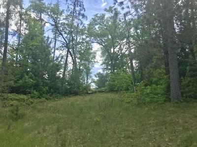 Crivitz Residential Lots & Land For Sale: Lt 1 Parkway