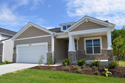 Lake Geneva Single Family Home For Sale: 203 Cappella Way