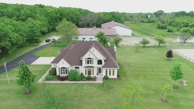 Racine Single Family Home For Sale: 7215 Botting Rd